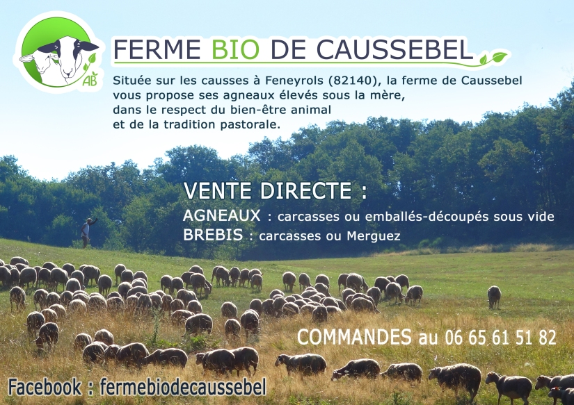 Affiche Caussebel-VenteDirecte